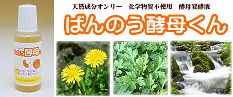 http://mitubachikai.jp/pic-labo/koubo10.jpg